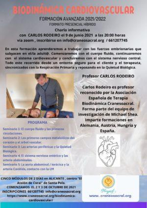 Biodinámica Cardiovascular